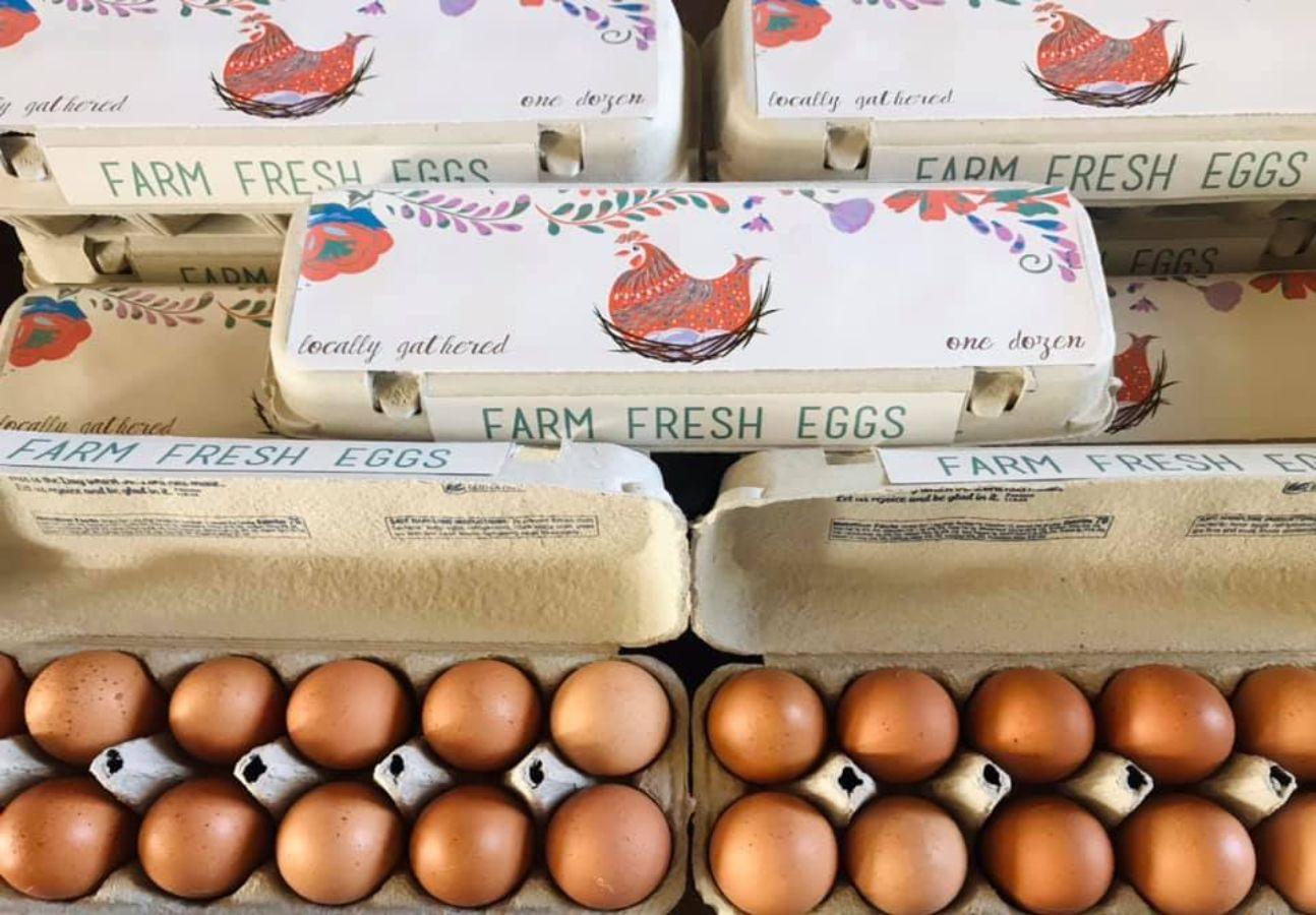 Showing farm fresh brown eggs.